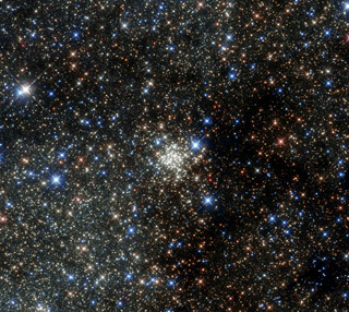 Arches cluster