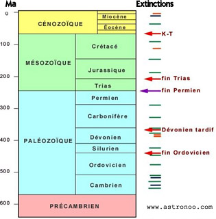 extinctions of species, the Phanerozoic