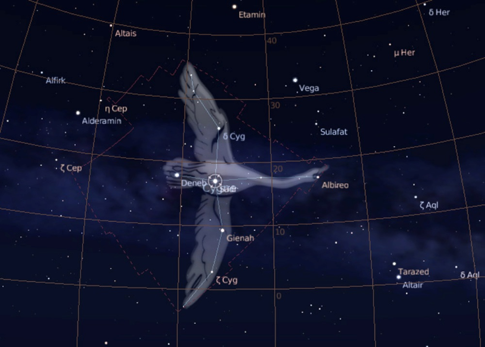http://www.astronoo.com/images/constellations/cygne.jpg