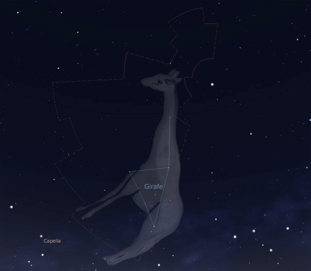 constellation de la girafe