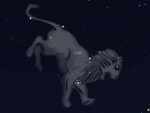 Constellations du printemps - Lion