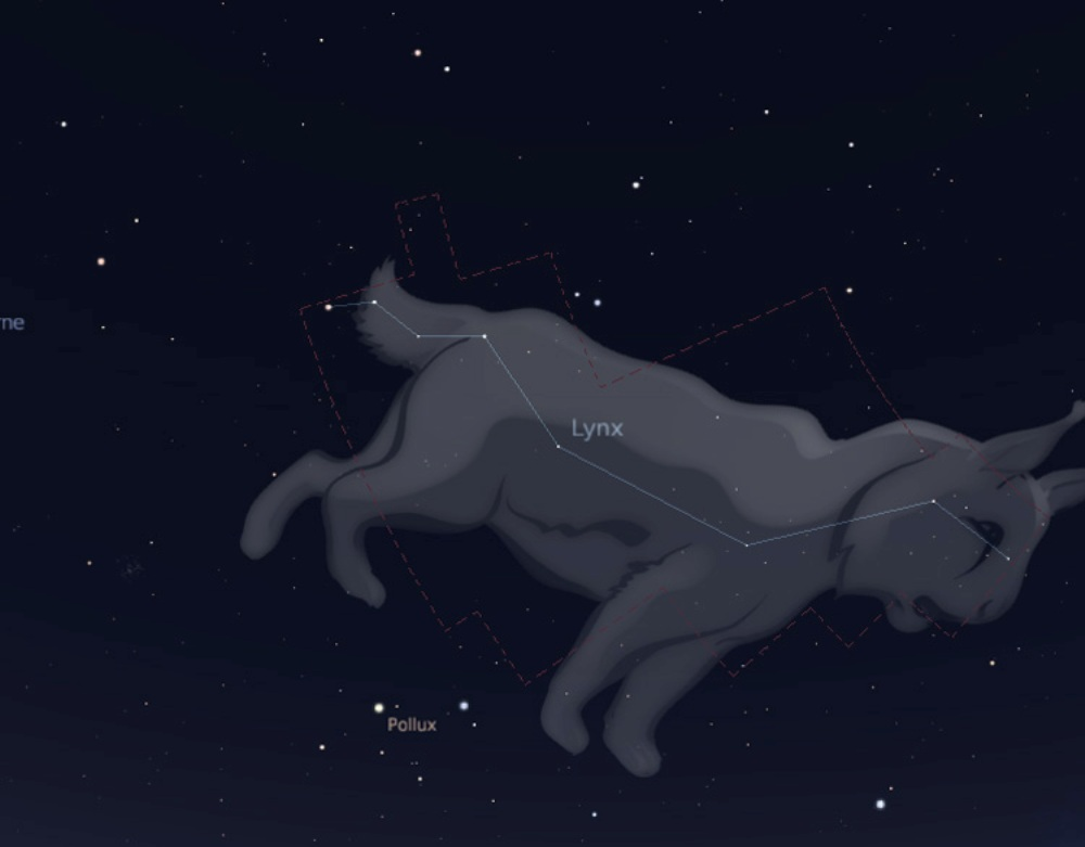constellation du lynx