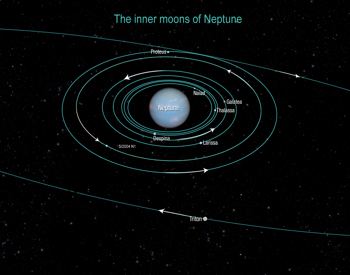 Gallery of Neptune's 13 Moons (page 3) - Pics about space
