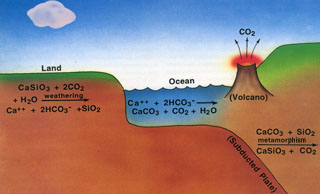 carbonate silicate cycle
